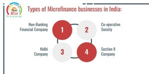 Types of Microfinance businesses in India