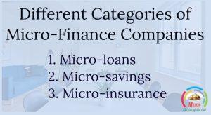 Micro-Finance Companies