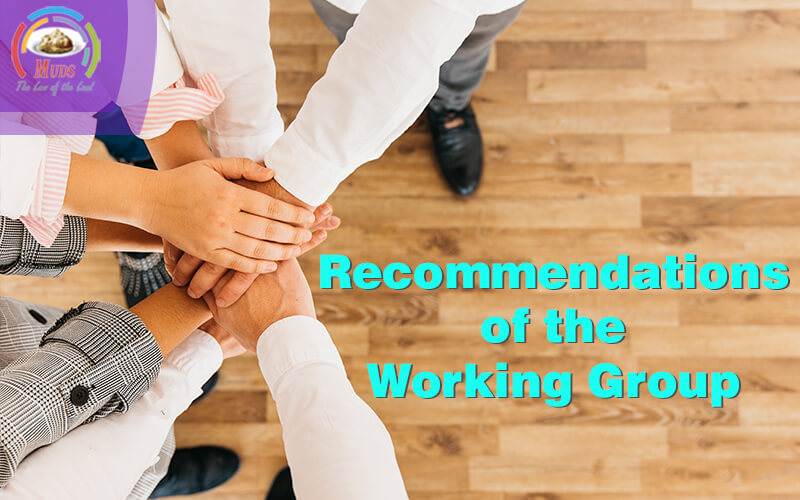Recommendations of the working group