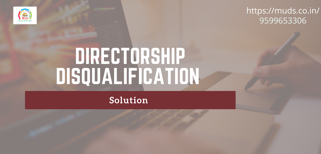 director disqualification solution