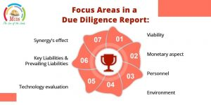 Focus Areas in a Due Diligence Report