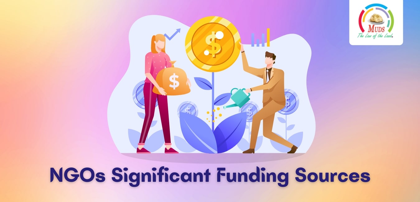 NGOs Significant Funding Sources